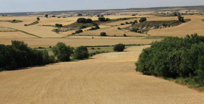 Darbas žemės ūkyje Anglijoje