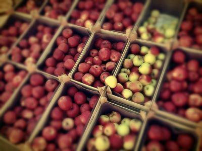Siūlo darbą vaisių sandėliuose